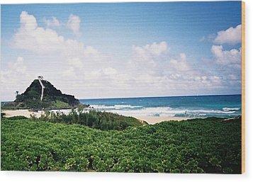 Hawaii Beach Scene Wood Print by Judyann Matthews