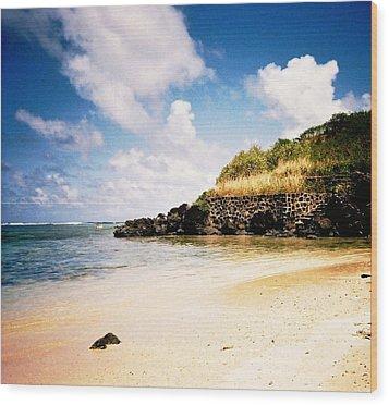 Wood Print featuring the photograph Hawaii Beach View by Judyann Matthews