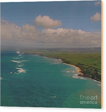 Hawaii From Above Wood Print by Louise Fahy