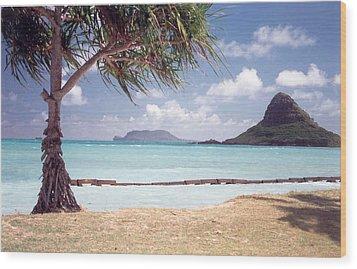 Hawaii Heaven Wood Print by Lori Mellen-Pagliaro