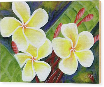 Hawaii Tropical Plumeria Flower #298, Wood Print by Donald k Hall