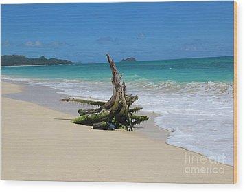 Hawaiian Beach Wood Print by Anthony Jones