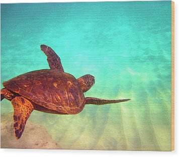 Hawaiian Green Sea Turtle Wood Print by Bette Phelan