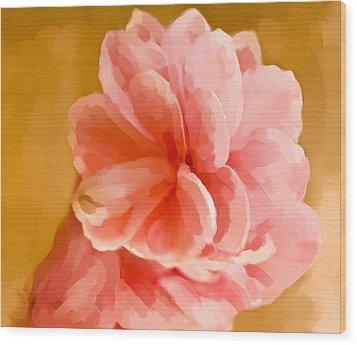 Hawian Ginger Flower Wood Print by Daniel D Miller