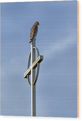 Hawk On Steeple Wood Print by Richard Rizzo