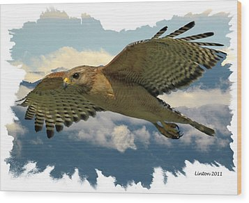 Hawk On The Wing Wood Print by Larry Linton