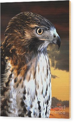 Hawk Sunset Wood Print by Adam Olsen