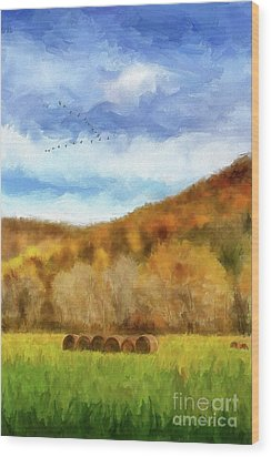 Wood Print featuring the photograph Hay Bales by Lois Bryan