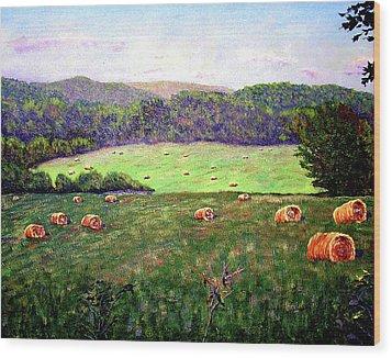 Hay Field Wood Print by Stan Hamilton