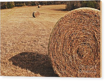 Hay In The Field Wood Print by Tamyra Ayles