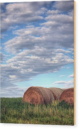 Hay It's Art Wood Print by JC Findley