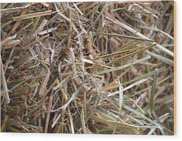 Hay Wood Print by Linda Geiger