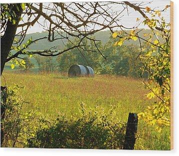 Hay Roll Meadow Wood Print