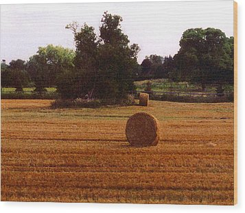 Wood Print featuring the photograph Hay Rolls 2 Db  2 by Lyle Crump
