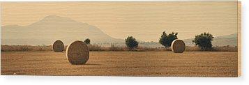 Hay Rolls  Wood Print by Stelios Kleanthous