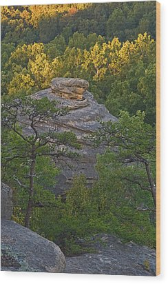 Hay Stack Rock.  Wood Print