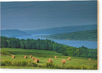 Hayfield And Lake I  Wood Print