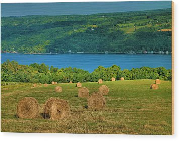 Hayfield And Lake Iv Wood Print by Steven Ainsworth