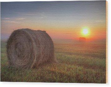 Wood Print featuring the photograph Hayrise by Dan Jurak