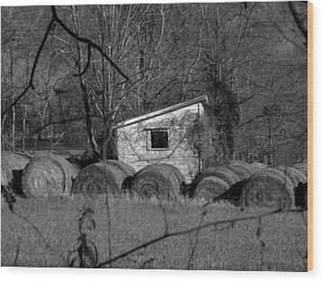 Hayroll Shed 2 Wood Print by Michael L Kimble