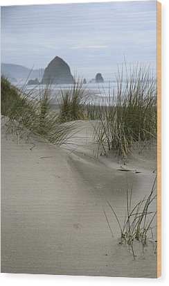 Haystack Rock From Chapman Point Wood Print by Steven A Bash