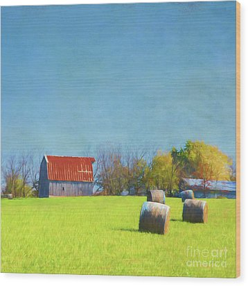 Wood Print featuring the photograph Haystacks by Elena Nosyreva