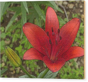 Wood Print featuring the digital art Hazelle's Red Lily by Jana Russon