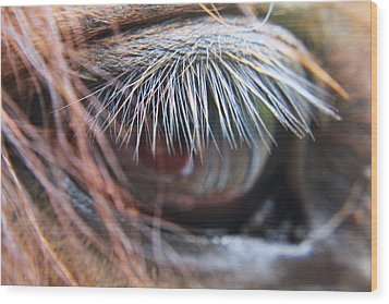 He Knows Wood Print by Lori Mellen-Pagliaro
