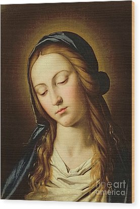 Head Of The Madonna Wood Print by Il Sassoferrato