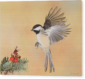 Heading For The Rose Hips Wood Print by Gerry Sibell