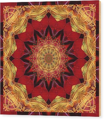 Healing Mandala 28 Wood Print by Bell And Todd