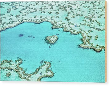 Heart Of The Reef Wood Print by Az Jackson