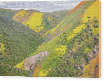 Wood Print featuring the photograph Heart Of The Temblor Range by Marc Crumpler