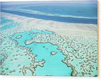 Wood Print featuring the photograph Heart Reef by Az Jackson