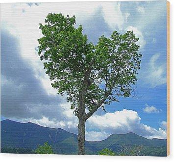 Heart Shaped Tree Wood Print