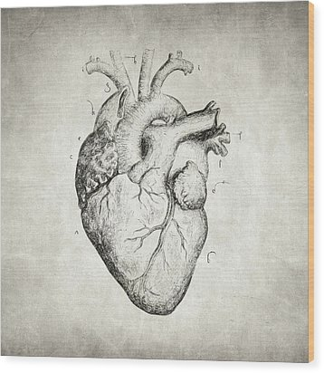 Wood Print featuring the drawing Heart by Taylan Apukovska