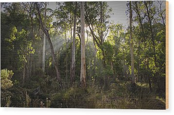 Wood Print featuring the photograph Heartland by Tim Nichols