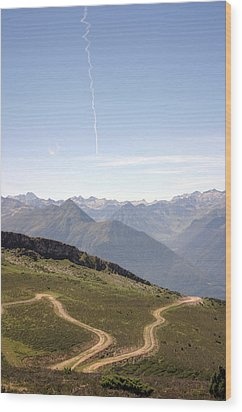 Heaven And Earth Path  Wood Print by Dagmar Batyahav