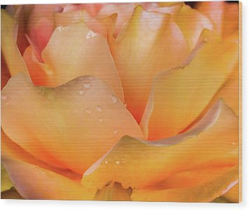 Wood Print featuring the photograph Heaven Scent by Karen Wiles