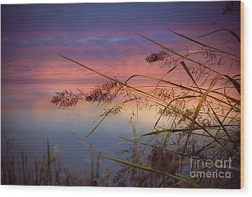 Wood Print featuring the photograph Heavenly Bliss by Brenda Bostic