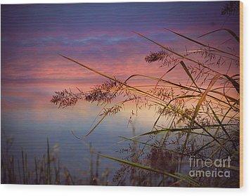 Heavenly Bliss Wood Print by Brenda Bostic