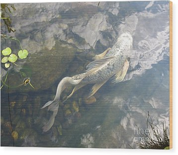 Heavenly Fish Wood Print by Laurianna Taylor