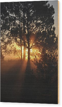 Wood Print featuring the photograph Heavenly by John Knapko