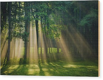 Heavenly Light Sunrise Wood Print by Christina Rollo