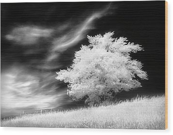 Wood Print featuring the photograph Heavenly Places by Dan Jurak