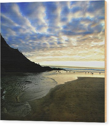 Heceta Head At Dusk Wood Print by Bonnie Bruno
