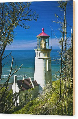 Heceta Lighthouse I Wood Print by Dale Stillman