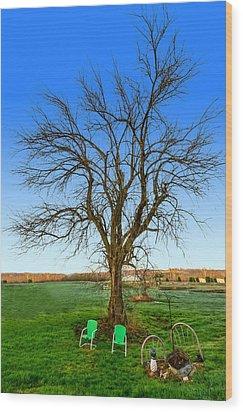 Hedge Apple Tree Wood Print by Brian Stevens