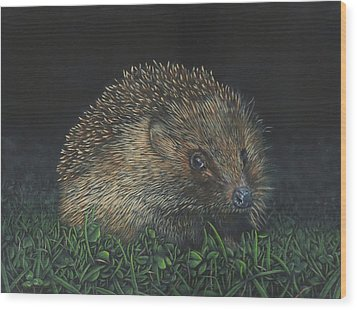 Hedgehog Wood Print