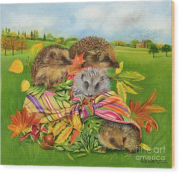 Hedgehogs Inside Scarf Wood Print by EB Watts